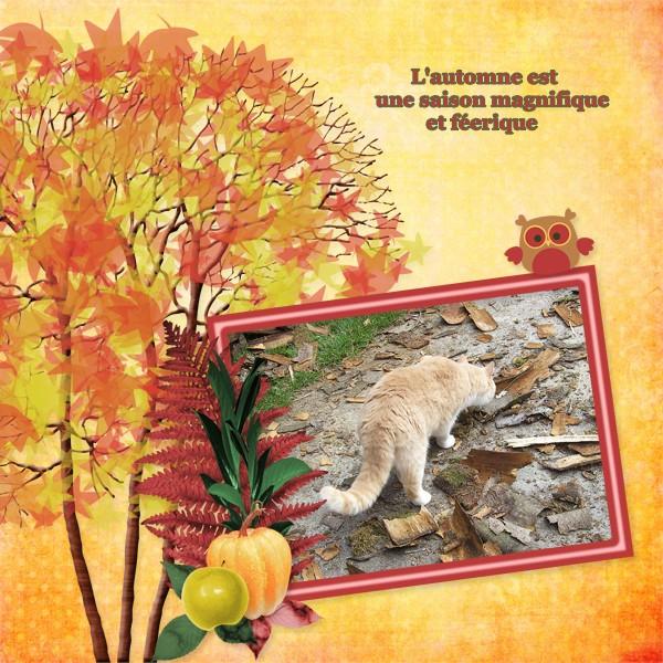 http://i73.servimg.com/u/f73/10/08/05/77/autumn11.jpg