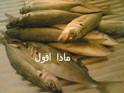 طريقة عمل السمك المشوى بالفرن uo11.jpg
