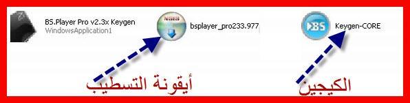 حصريا أنفراد تام::BSPlayer Pro v2 33 977 Special Christmas Edition :: كامل::2009