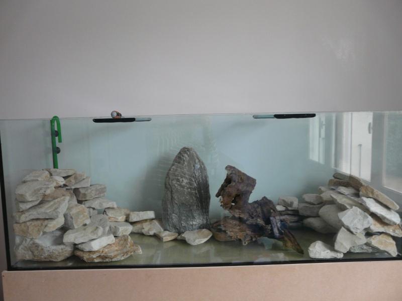 Aquarium 400 l pour du malawi plein de micro bulles for Faux poisson aquarium