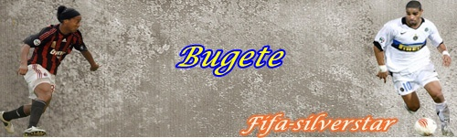 Bugete