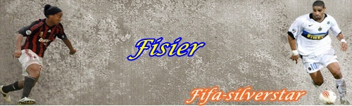 Download Fisier