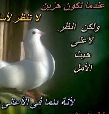 خريطه المنتديات - منتديات سوبر ...