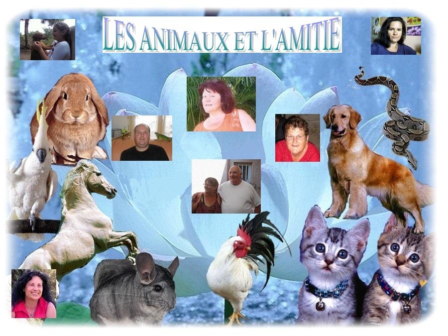 LES ANIMAUX ET L'AMITIE