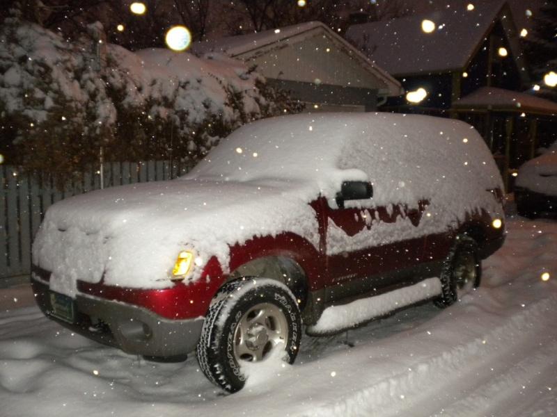 snowy-10.jpg