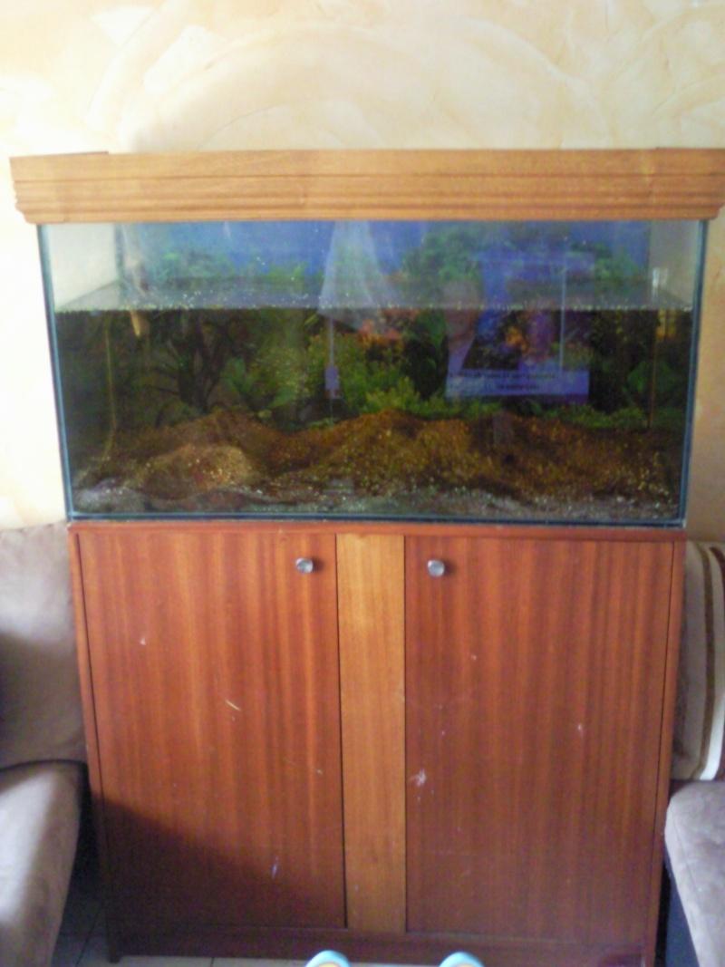 Aquarium 200l et meuble - Aquarium 200 litres avec meuble ...