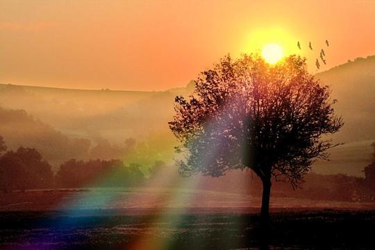 Réveil matinal dans LES 4 SAISONS lever-10