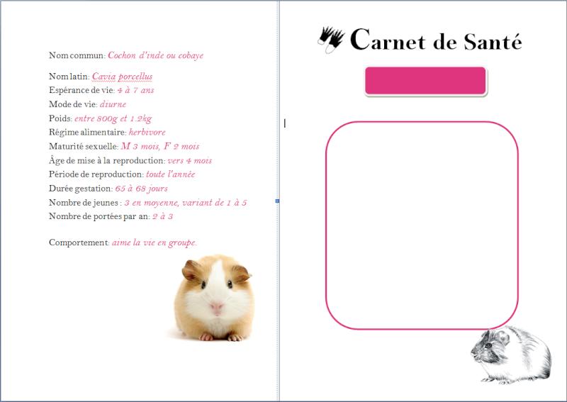 Populaire Carnet de Santé - Page 3 OS69